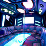 Las Vegas 30 passenger Party Bus With Dancer Poles
